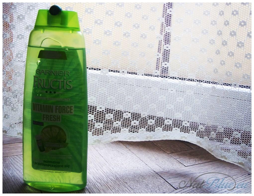 Garnier Fructis Perfect Shampoo