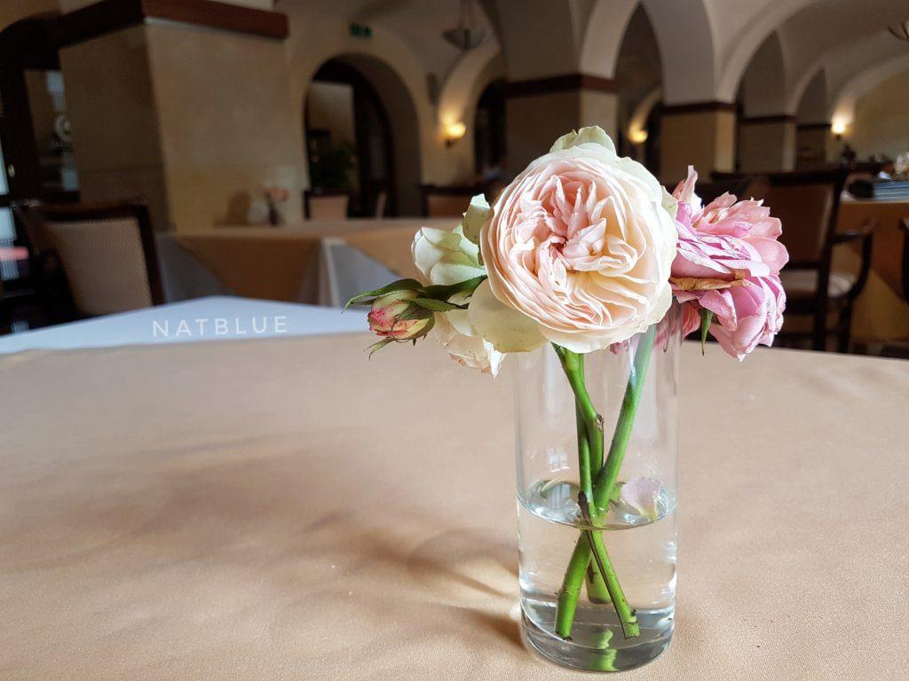 restauracja, Wieliczka, hotel, Turówka