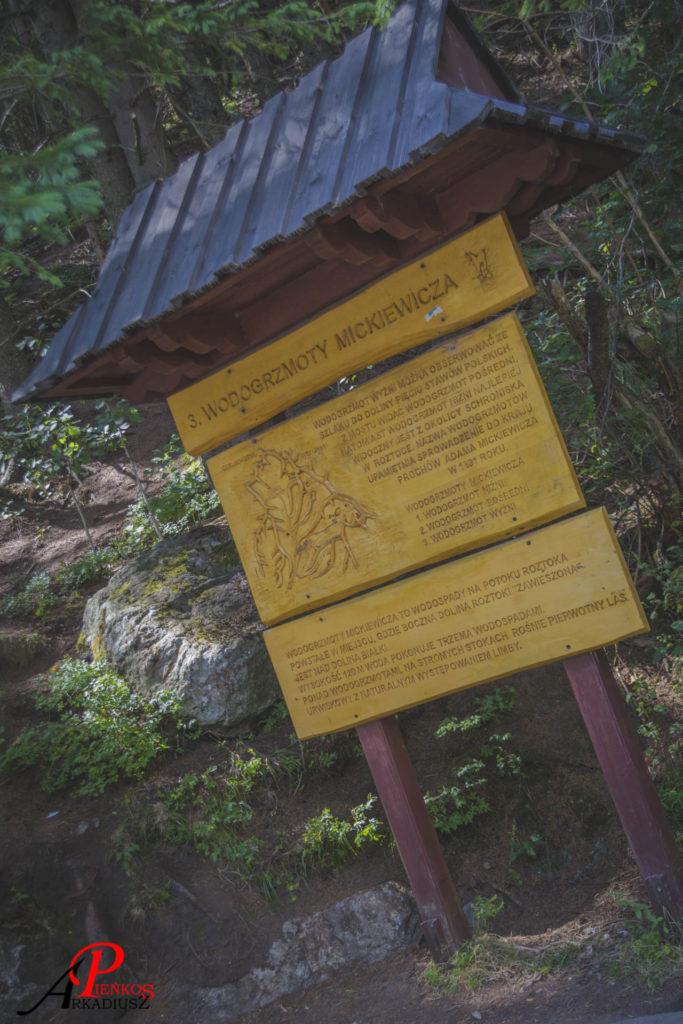 Wodogrzmoty Mickiewicza, Droga nad Morskie Oko